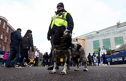 Answer dog outside the ground before the Premier League match at Stamford Bridge, London.