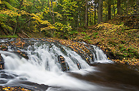 Greenstone Falls is one of the bigger waterfalls on the Little Carp River. It is located in the backcountry of the Porcupine Mountains in Michigan.<br />