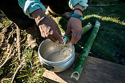 NO WEB/NO APPS - Exclusive. (Text available) A typical way of cooking rice inside bamboo canes, in 'Palma Real' native community, near Puerto Maldonado, Peru on July 17, 2017. The Amazon rainforest is famous as 'The Lung of the Earth', but also for the presence of numerous native communities, who have always lived isolated and in close contact with nature for generations, used to seek for food and medicines and to build items directly from the environment in which they live. The unstoppable rise of globalization has drastically changed their needs, expectations and consequently their way of life. Located in the Tambopata National Reserve, on the border between Peru and Bolivia, the native Comunidad Palma Real is one of the clearest examples of this change. Living on the banks of the Madre de Dios River since approximately 1976, Palma Real comprises about 300 people part of the nomadic community Ese-Eja, established in the Amazon rainforest of Peru before the Spanish colonization. Photo by Giacomo d'Orlando/ABACAPRESS.COM