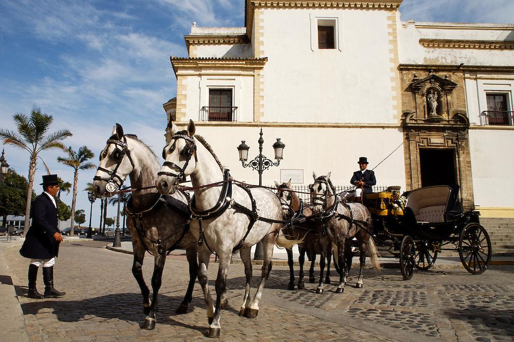 ESPAÑA / ANDALUCÍA / CÁDIZ.Coche de caballos en la iglesia de Santo Domingo...