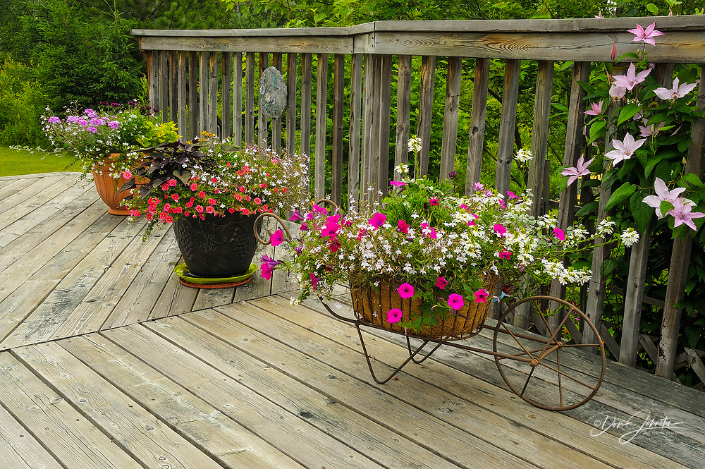 Flower pots and planters on sundeck, Lively, Ontario, Canada