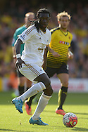 Bafetimbi Gomis of Swansea City in action. Barclays Premier League, Watford v Swansea city at Vicarage Road in London on Saturday 12th September 2015.<br /> pic by John Patrick Fletcher, Andrew Orchard sports photography.