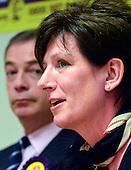 2013_02_12_UKIP_SSI
