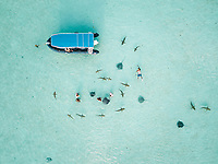 Aerial view of people swimming with sharks and sting rays in transparent sea of Moorea Island, French Polynesia.