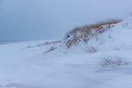 Beach in Snow, Quogue, NY