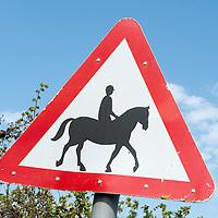 Horsey Things!