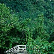Native faleo'o at Saua site on Ta'u, American Samoa.