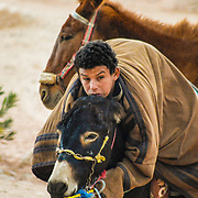 This Bedouin  boy was using his mules to ride us to one of the remotes temples in the ruins of Petra.
