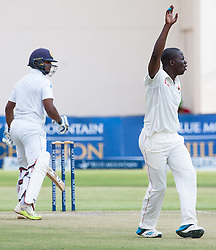 Zimbabwe bowler Donald Tiripano appeals for a wicket during the second day of the 100th test match for Zimbabwe played in a match with Sri Lanka at Harare Sports Club 30 October 2016.