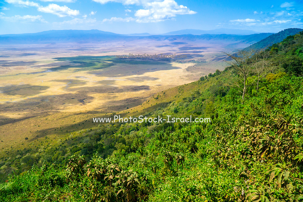 Africa, Tanzania, Lake Manyara National Park overlooking the volcanic crater and lake