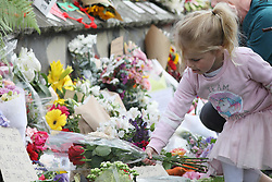 March 18, 2019 - Christchurch, New Zealand - A little girl places flowers at a memorial outside the Botanical Gardens as a tribute to victims of the mosque attacks in Christchurch on March 17, 2019. At least 50 people were killed and 36 injured in mass shootings at two mosques in the New Zealand city of Christchurch Friday, 15 March. A 28-year-old Australian born man appeared in Christchurch District Court on Saturday charged with murder. (Credit Image: © Sanka Vidanagama/NurPhoto via ZUMA Press)
