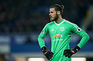 Manchester United Goalkeeper David De Gea looks on. Premier league match, Everton v Manchester Utd at Goodison Park in Liverpool, Merseyside on New Years Day, Monday 1st January 2018.<br /> pic by Chris Stading, Andrew Orchard sports photography.