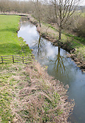 Straight stretch of mature River Deben in its flood plain, Wickham Market, Suffolk, England