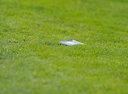 one fan throws away his season ticket - Photo mandatory by-line: Joe Meredith/JMP - Mobile: 07966 386802 03/05/2014 - SPORT - FOOTBALL - Bristol - Memorial Stadium - Bristol Rovers v Mansfield - Sky Bet League Two
