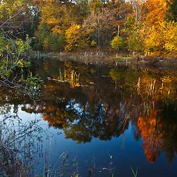 The pond at Elmwood Farm in Hopkinton, Massachusetts.