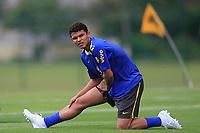 20090325: TERESOPOLIS, BRAZIL – Brazil National Team preparing match against Equador, at Teresopolis training center. In picture: Thiago Silva. PHOTO: CITYFILES