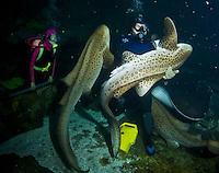 Guam Underwater World Walk-thru Aquarium, diving inside