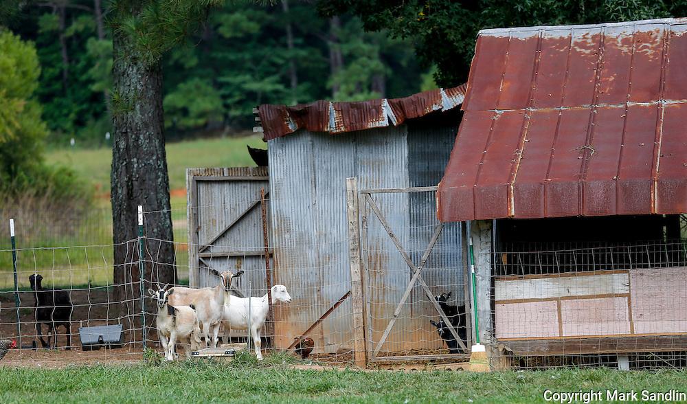 Fox Point Farm,