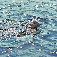 CANADA, ONTARIO. Ben Wiltsie (MR) swims in Lake of the Woods, southwest of Kenora.