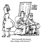 """""""Isn't it usually the breasts they enlarge with silicone?"""""""