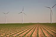 Windfarm in West Texas
