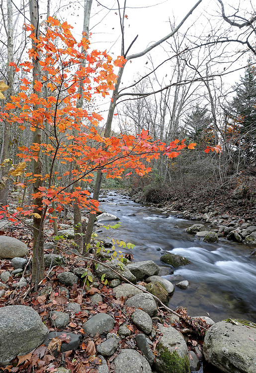 A river in Madison County, VIRGINIA Photo/Andrew Shurtleff Photography, LLC
