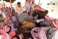 Pre-wedding feast honoring Mohammed Alerq, the groom. Al Amrah and Alerq of the Al Murrah tribe. The meal for this special occasion is camel meat and rice. Dahna Sands, Saudi Arabia