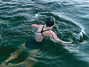 Mary Olivari, a member of the Serpentine Swimming Club, swims in the Serpentine Lake, Hyde Park, London, UK. The Serpentine Lake is situated in Hyde Park, London's largest central open space. The Serpentine Swimming Club was formed in 1864 'to promote the healthful habit of bathing in open water throughout the year'.  Its headquarters were beneath an old elm tree on the south side of the lake, a wooden bench for clothing being the only facility.  At this time London was undergoing rapid expansion and Hyde Park was now in the centre of a densely populated built up area and provided a place of relaxation to its urbanised masses. Now, the club has its own (somewhat spartan) changing facilities and members are  permitted by the Royal Parks to swim in the lake any morning before 09:30.  They race every Saturday morning throughout the year, regardless of the weather.