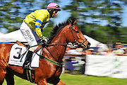 April 7, 2012 - Richard Boucher and American Crossing at Stoneybrook Steeplechase, Raeford NC