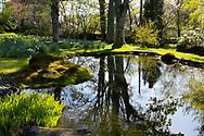 Chapelside Garden in Spring