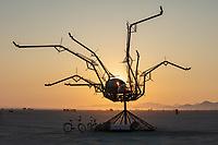 Spider Sweet by: Bryan Argabrite from: Santa Cruz, CA year: 2018
