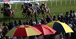 Runners and riders in the Champions League Betting At 188Bet Veterans' Handicap Chase during Super Sunday at Exeter Racecourse