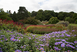 © Licensed to London News Pictures. 01/09/2016. Harrogate, UK. Colourful flowers are still on show as summer comes to an end at RHS Garden Harlow Carr in Harrogate, North Yorkshire. Today marks the first day of autumn and the end of summer. Photo credit : Ian Hinchliffe/LNP