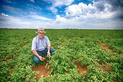 João Emílio Rocheto, maior produtor de batatas da América Latina, em sua propriedade de Perdizes / MG. FOTO: Jefferson Bernardes/ Agência Preview
