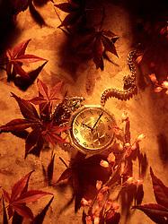still life antique Elgin pocket watch 1 one gold chain fob 11 eleven CONCEPT STOCK PHOTOS CONCEPT STOCK PHOTOS