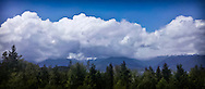 Clouds hiding the Olympic Peaks as seen across the Hood Canal from Nika Trail on the Kitsap Peninsula in Puget Sound, WA