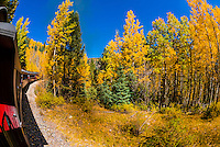 Fall color on the route of the Cumbres & Toltec Scenic Railroad train on the 64 mile run between Chama, New Mexico and Antonito, Colorado. The railroad is the highest and longest narrow gauge steam railroad in the United States. The train traverses the border between Colorado and New Mexico, crossing back and forth between the two states 11 times. The narrow gauge track is 3 feet wide. It runs over 10,015 ft (3,053 m) Cumbres Pass.