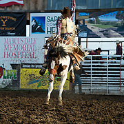 Lane Jensen on Red Eye Rodeo Cherokee Jack at the Darby Broncs N Bulls event Sept 7th 2019.  Photo by Josh Homer/Burning Ember Photography.  Photo credit must be given on all uses.