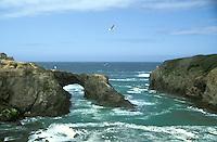 Looking at the Pacific Ocean off the Mendocino Coast, Mendocino, California