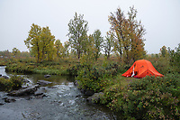 Tent camping in rainy weather next to small river on middle section of Kungsleden Trail, Lapland, Sweden
