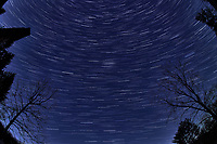 Winter Nighttime Sky Over New Jersey. Composite star trail image (03:30-03:59) taken with a Nikon D850 camera and 8-15 mm fisheye lens (ISO 800, 15 mm, f/8, 30 sec). Raw images processed with Capture One Pro and the composite created with Photoshop CC (statistics, maximum).