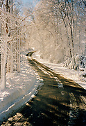 Winding country road with snow on trees