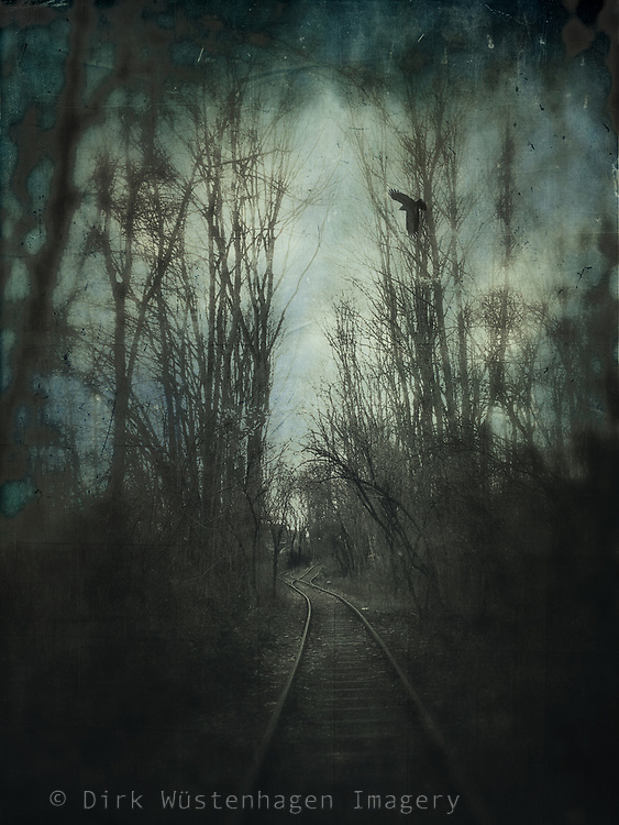 Abandoned railway tracks on a wintermoorning - blurred photograph