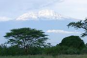 Africa, Tanzania, The snow covered peak of Kilimanjaro mountain
