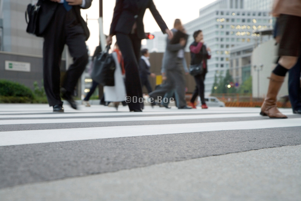 low angele view of business men and women on a zebra crossing