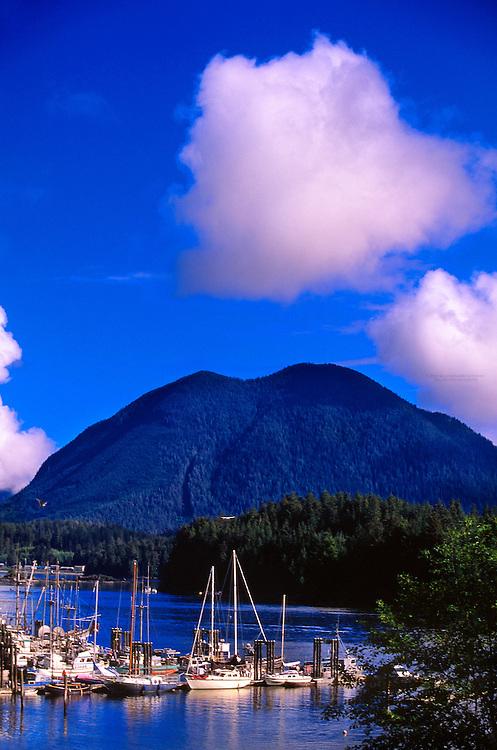 Harbor in Tofino, west coast of Vancouver Island, British Columbia, Canada
