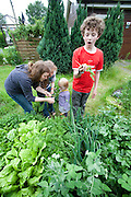 The Hollmann Sturm family in Hamburg, Germany at the city garden small house that they rent. They were photographed for the Hungry Planet: What I Eat project with a week's worth of food. Model Released.