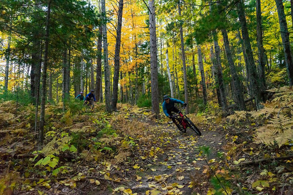 Mountain biking the Harlow Lake area of Marquette Michigan in fall.