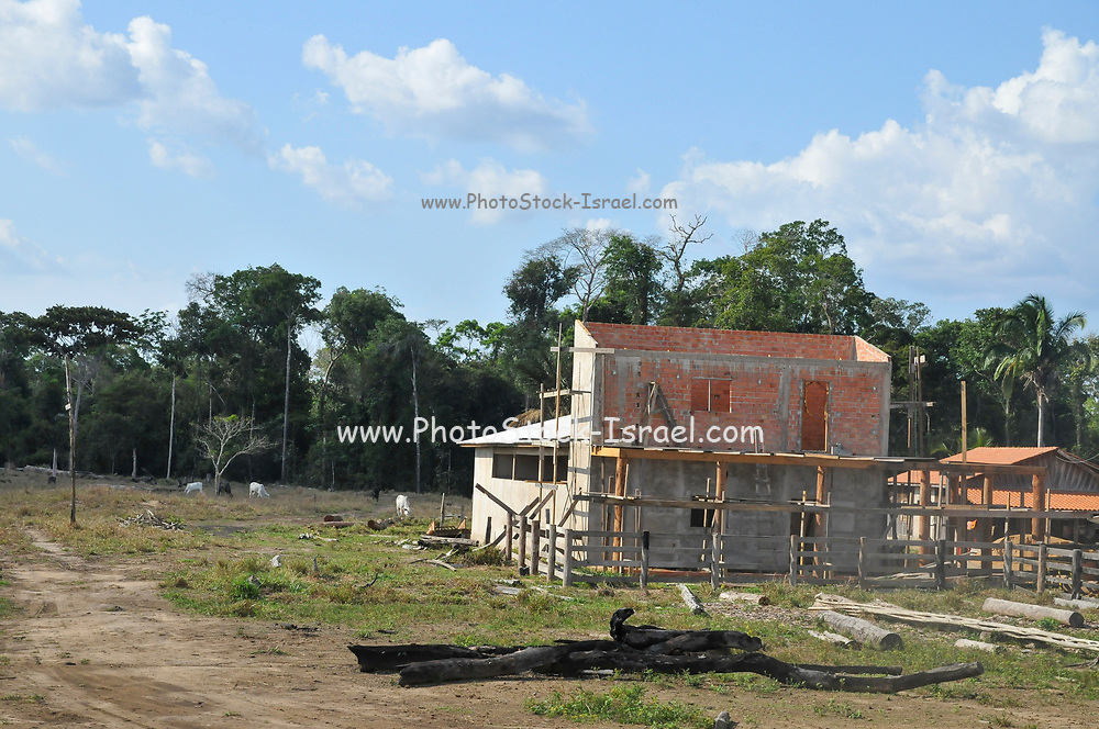 The effects of deforestation on the Amazonian rainforest in Brazil Building a new home on cleared land