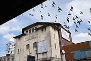 Local atmosphere due to Coronavirus lockdown is felt on a street by street level as streets remain deserted as a flock of feral pigeons fly above the Gurdwara Babe Ke religious centre next to the derelict New Palladium Cinema, once the Hockley Picture House from under Hockley Flyover in Hockley as people observe the stay at home advice from the government on 7th April 2020 in Birmingham, England, United Kingdom. Coronavirus or Covid-19 is a new respiratory illness that has not previously been seen in humans. While much or Europe has been placed into lockdown, the UK government has announced more stringent rules as part of their long term strategy, and in particular social distancing.